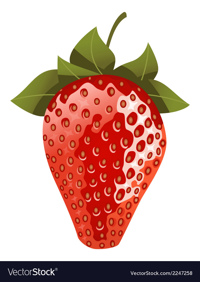 Isolated red strawberry vector   Price: 1 Credit (USD $1)