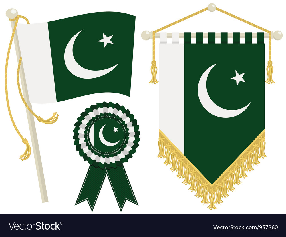 Pakistan flags vector | Price: 1 Credit (USD $1)