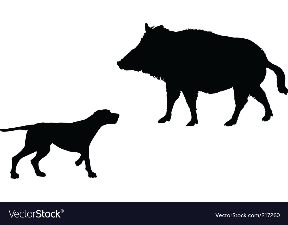 Setter and boar animals vector | Price: 1 Credit (USD $1)