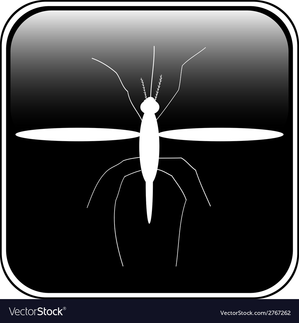 Mosquito button vector | Price: 1 Credit (USD $1)