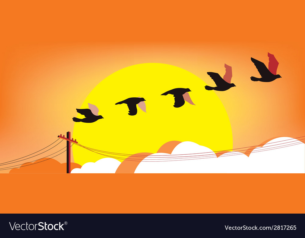 Silhouette flying birds at sunset vector | Price: 1 Credit (USD $1)