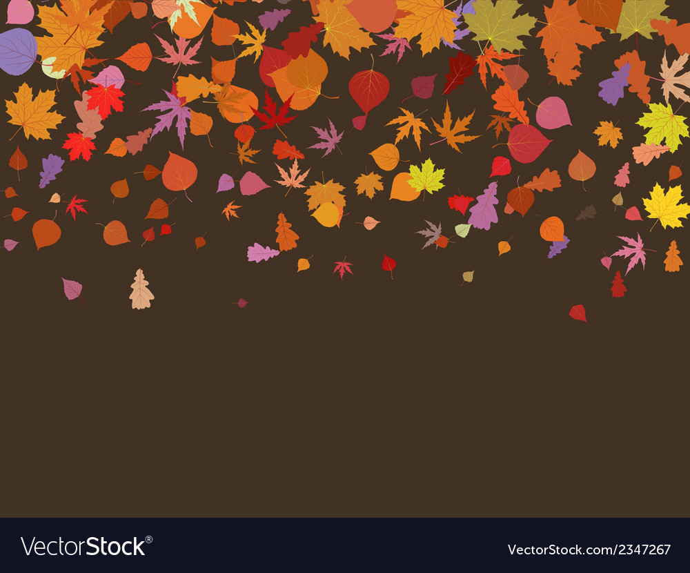 Falling multicolor autumn leaves eps 8 vector | Price: 1 Credit (USD $1)