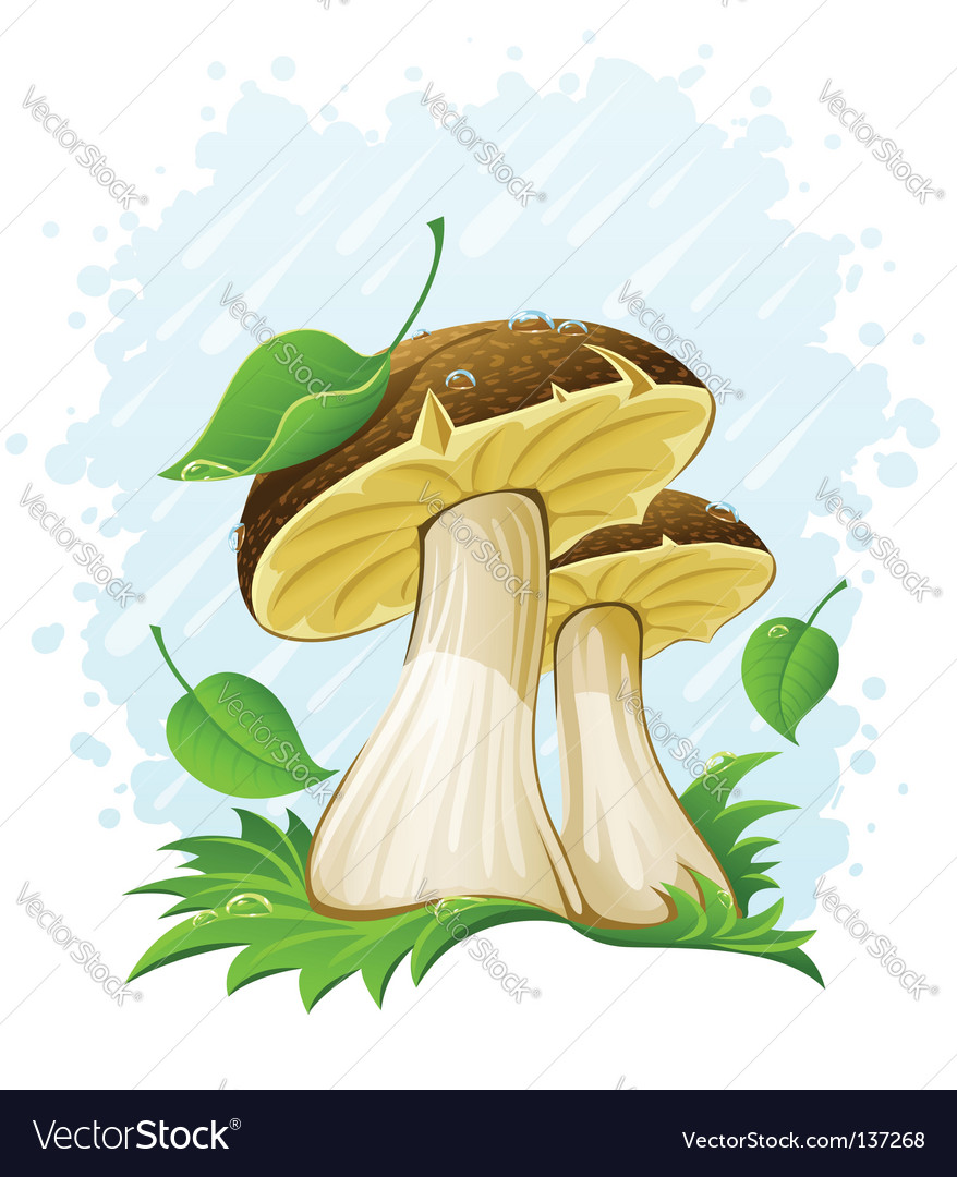Mushrooms vector | Price: 3 Credit (USD $3)