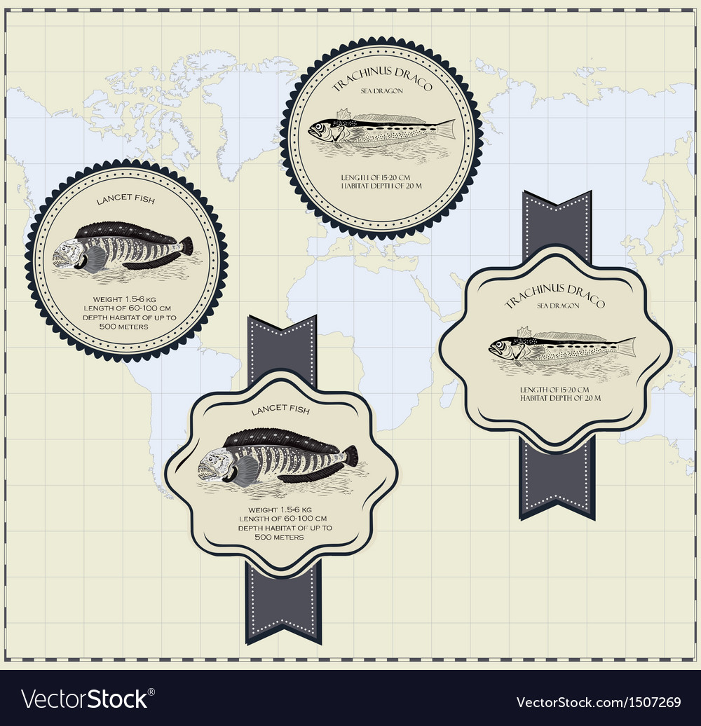 Fish label vector | Price: 3 Credit (USD $3)
