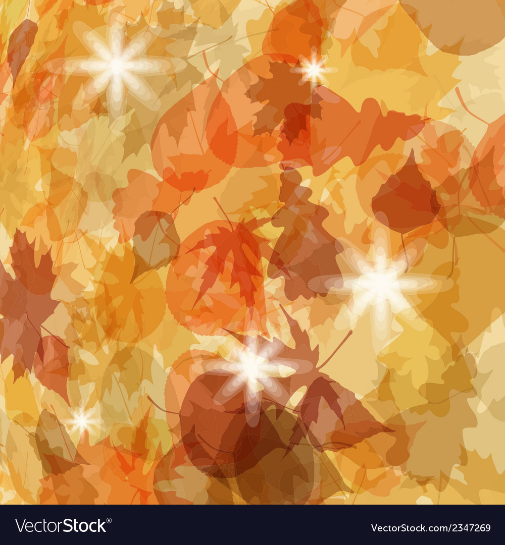 Sun pushing through a varicoloured leaves eps 8 vector | Price: 1 Credit (USD $1)