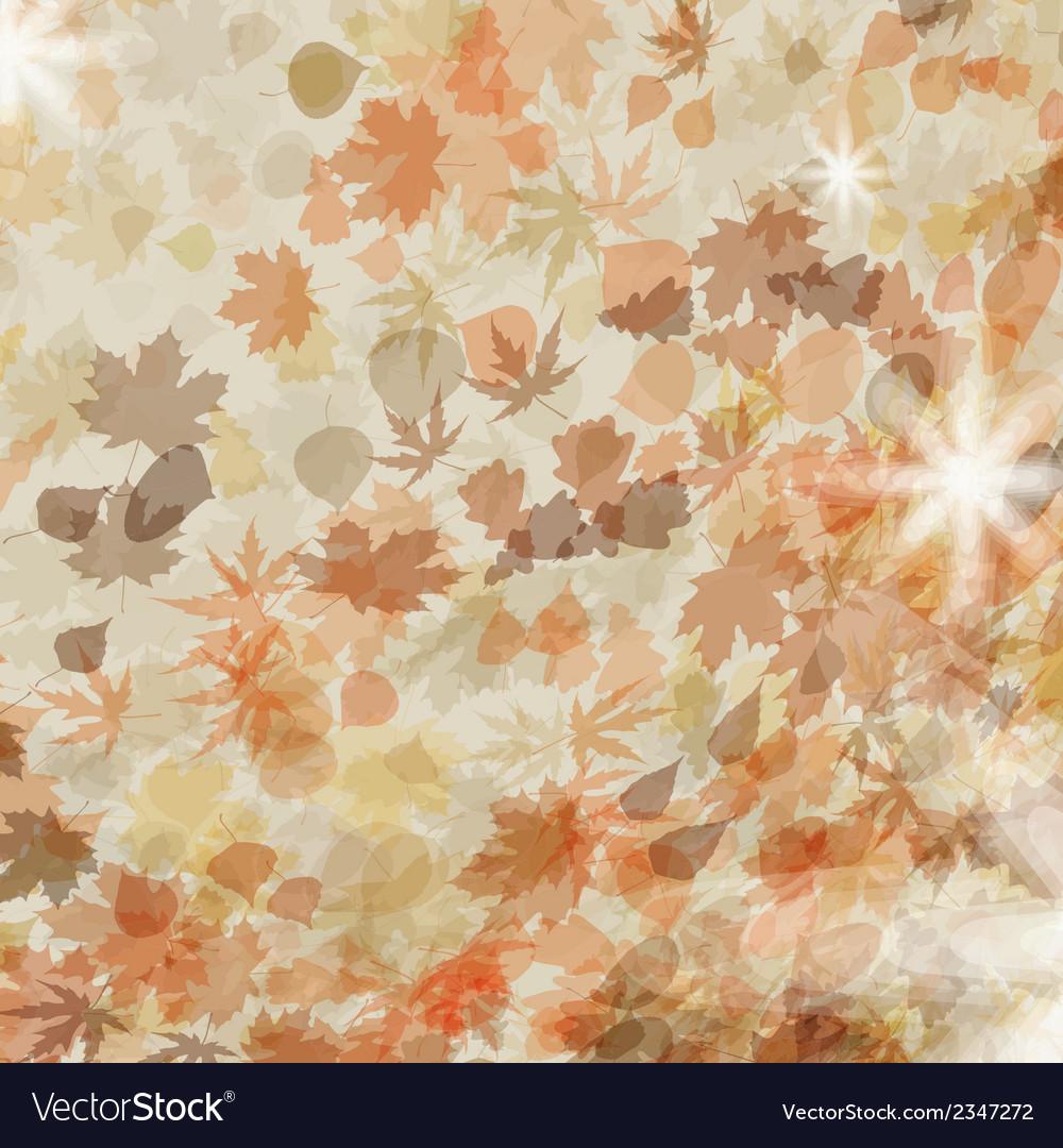 Autumn leaves seasonal template design eps 8 vector | Price: 1 Credit (USD $1)