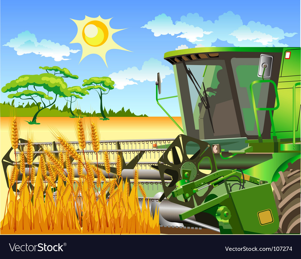 Harvest vector | Price: 3 Credit (USD $3)