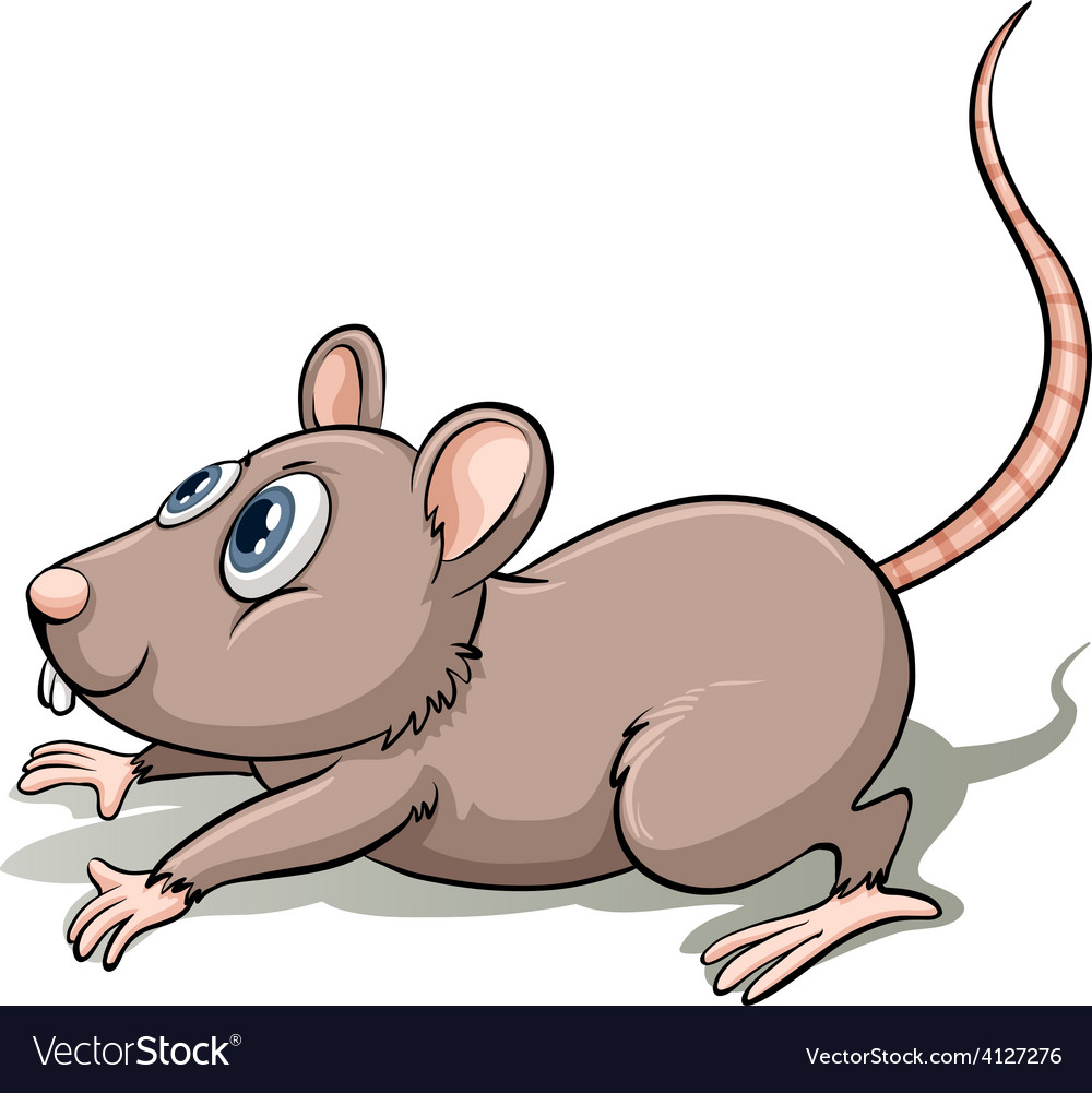 One gray mouse vector | Price: 3 Credit (USD $3)