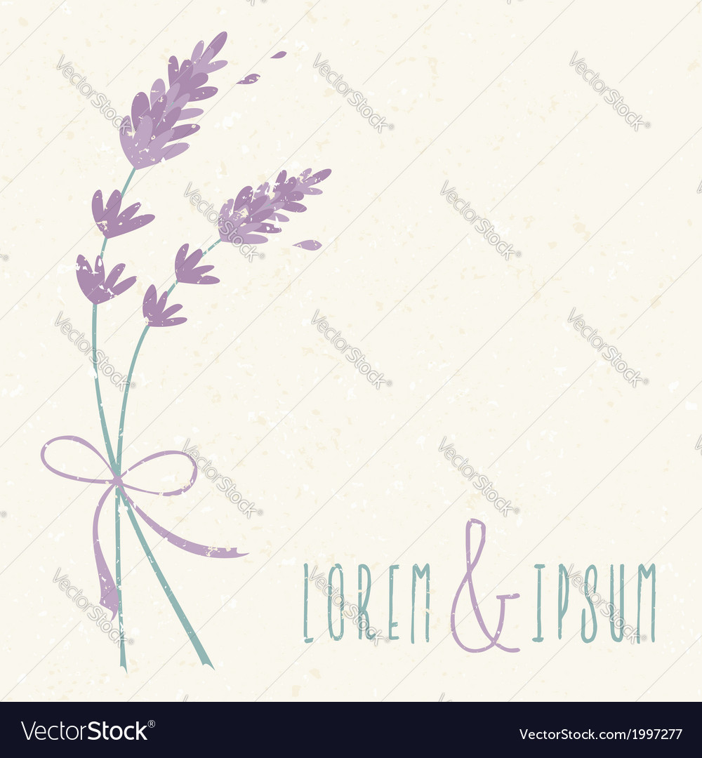 Wedding day design invitation lavender flowers vector | Price: 1 Credit (USD $1)