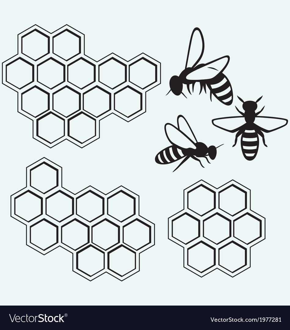 Bees on honey cells vector | Price: 1 Credit (USD $1)
