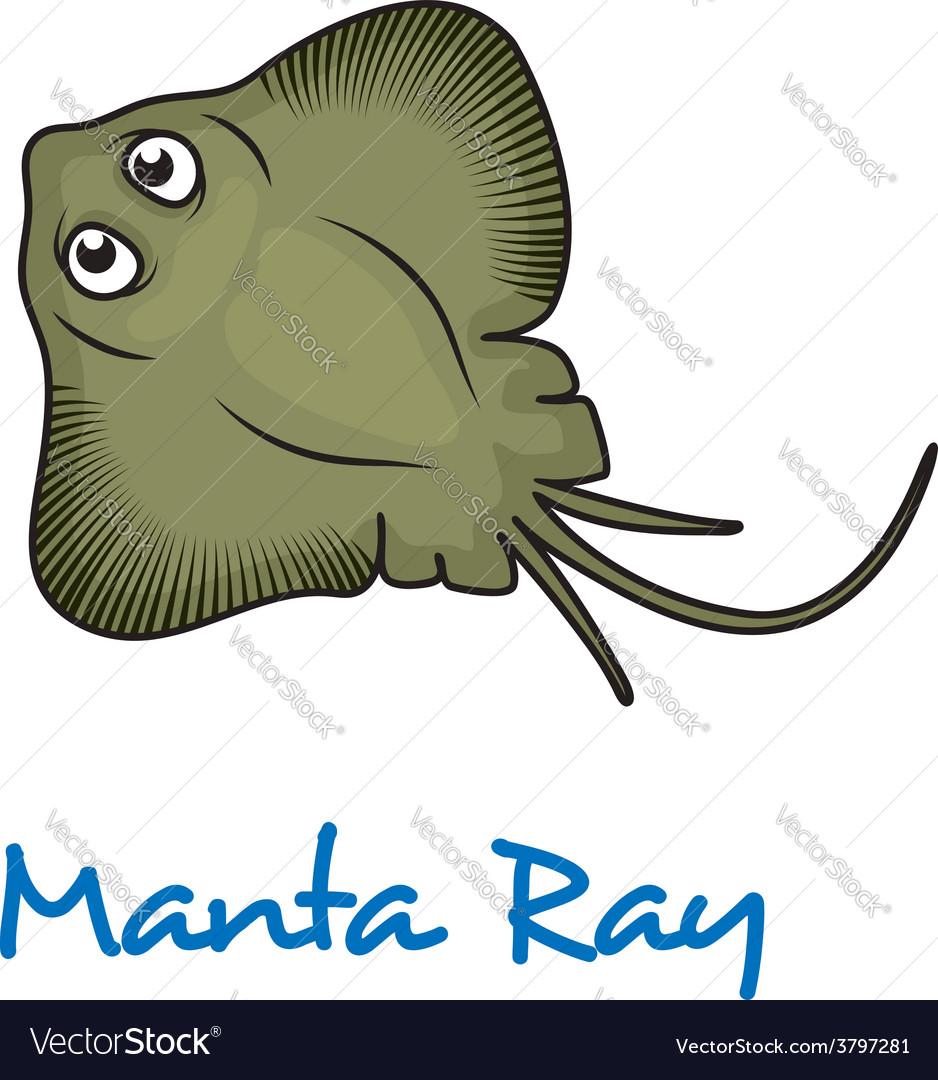 Cartoon manta ray vector | Price: 1 Credit (USD $1)
