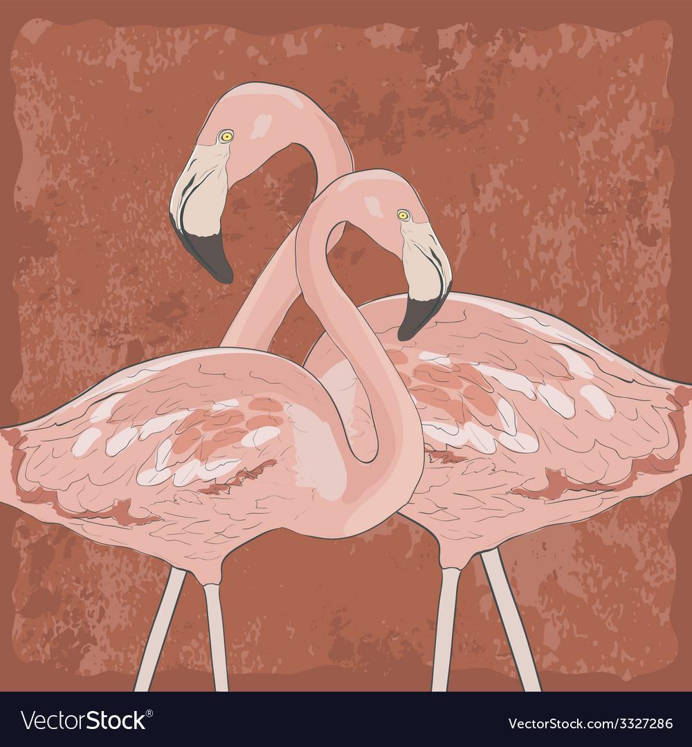 Flamingoakva8 vector | Price: 1 Credit (USD $1)