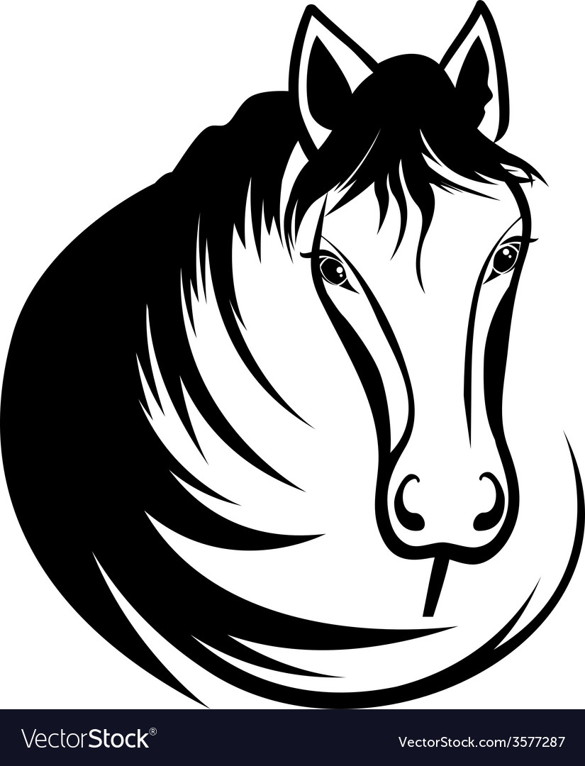 Head of horse vector | Price: 1 Credit (USD $1)