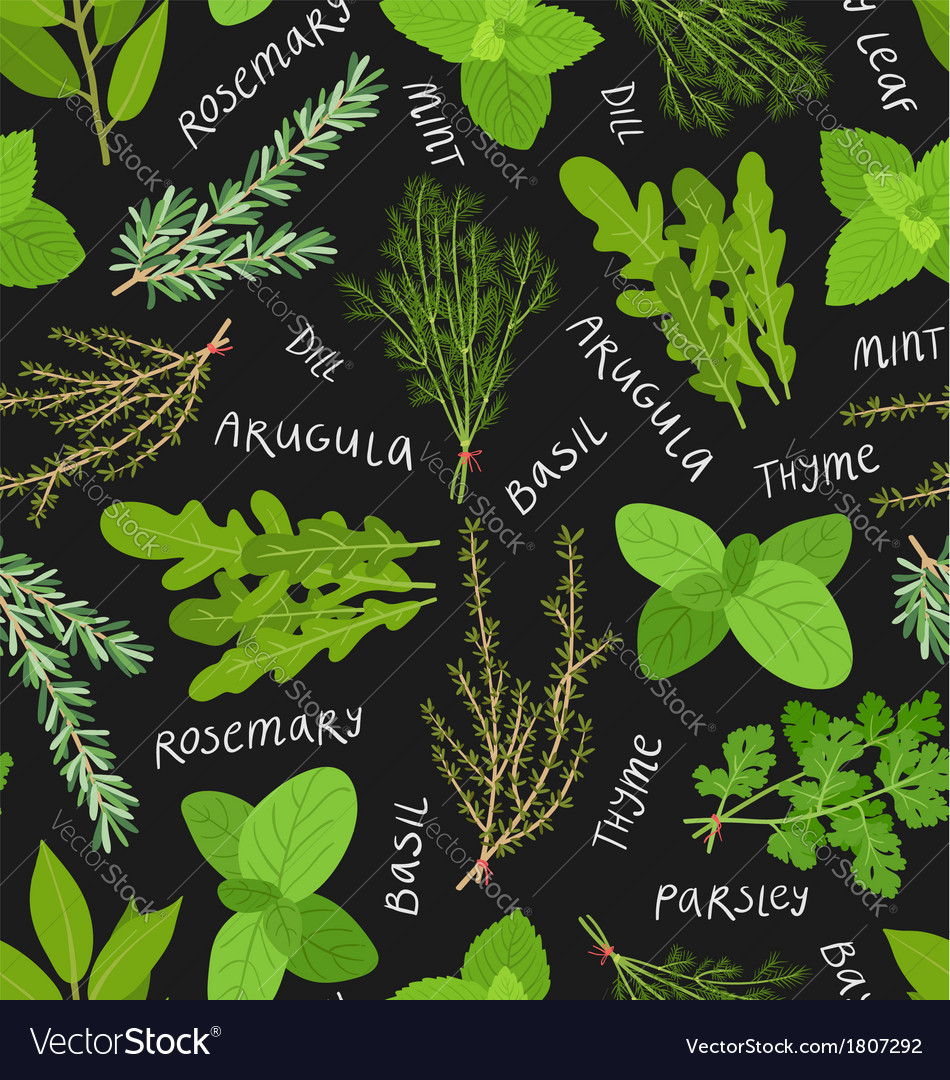 Herbs pattern vector | Price: 1 Credit (USD $1)