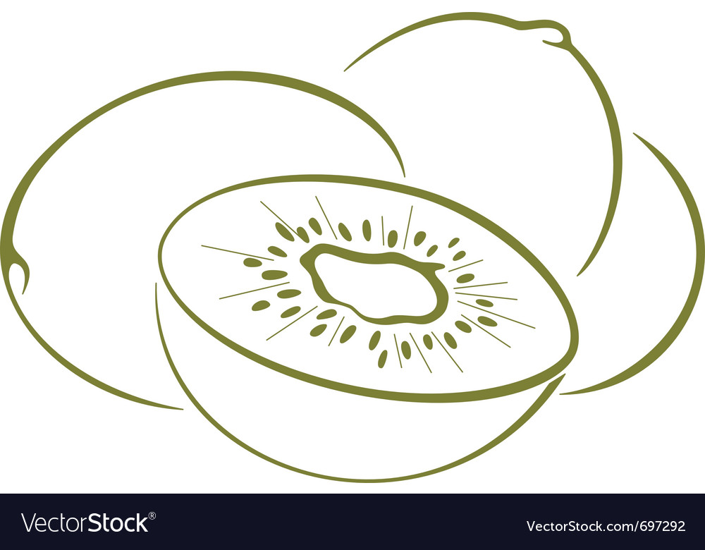 Kiwi fruit pictogram vector | Price: 1 Credit (USD $1)