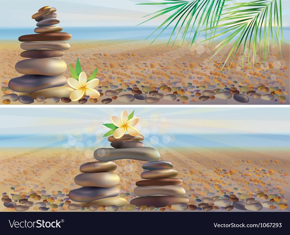 Massage spa stones vector | Price: 3 Credit (USD $3)
