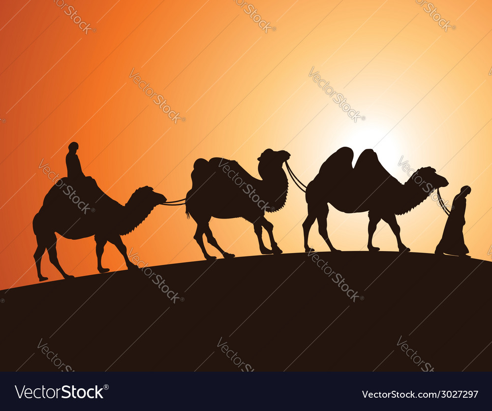 Camels and bedouins in desert vector | Price: 1 Credit (USD $1)
