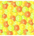 Citrus seamless pattern with lemons oranges and vector