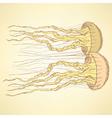 Sketch cute jellyfish in vintage style vector