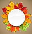 Maple leaves of different colors composition vector
