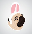 Lady dog rabbit vector