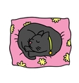 Cute doodle cat sleeps on the pillow vector
