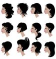 Set of black hair styling for woman vector