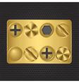 Set of golden screws vector