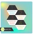 Abstract flat hexagon infographics options banner vector