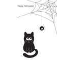 Cat and spider vector