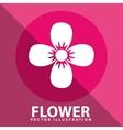 Flower pink vector