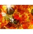 Sun pushing through a varicoloured leaves eps 8 vector