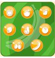 Fruit buttons vector
