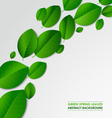 Abstract green spring leaves background vector