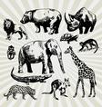 Exotic animals vector