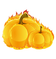Burning pumpkins vector