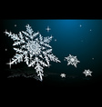 Snowflake on blue vector