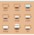 Coffee infographic vector