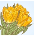 Floral background with flowers of tulips vector