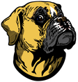 Boxer head vector