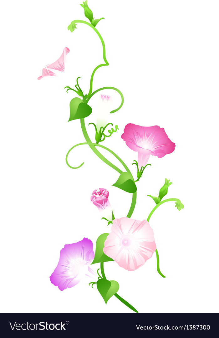 Icon flower vector | Price: 1 Credit (USD $1)