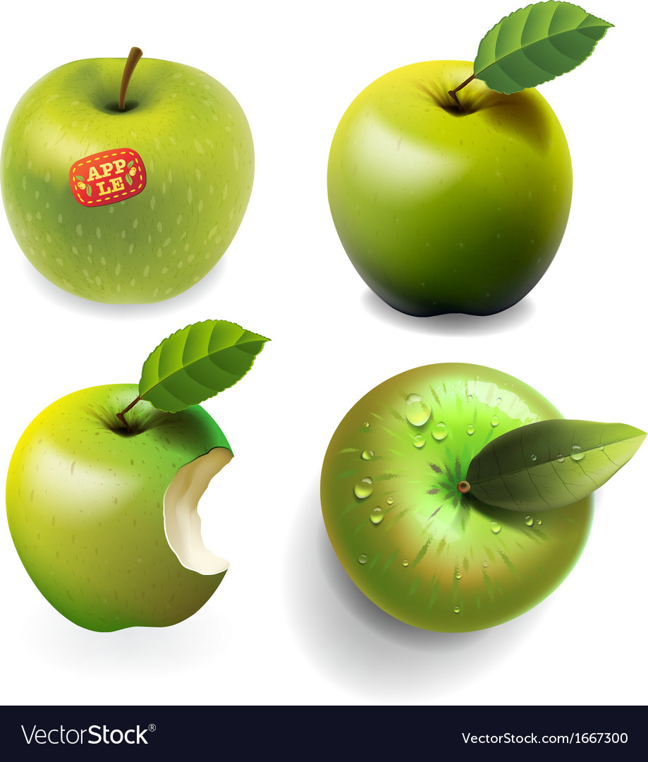Set of green ripe apples four various view vector | Price: 1 Credit (USD $1)