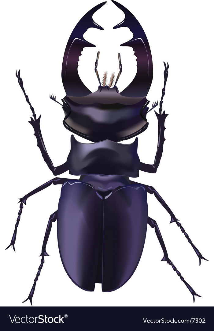 The real bug vector | Price: 1 Credit (USD $1)