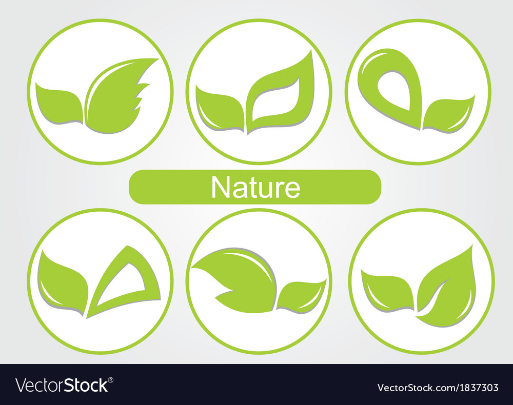 Set of green leafs images vector | Price: 1 Credit (USD $1)