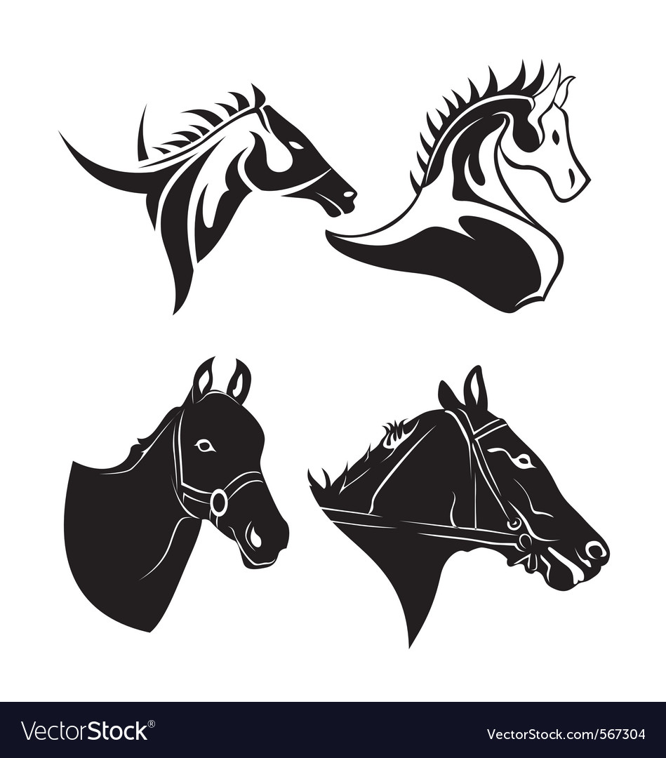 Horse head vector | Price: 1 Credit (USD $1)
