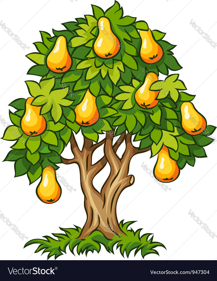 Pear tree with ripe fruits vector | Price: 1 Credit (USD $1)