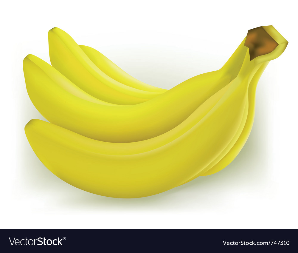 Fresh banana vector | Price: 1 Credit (USD $1)