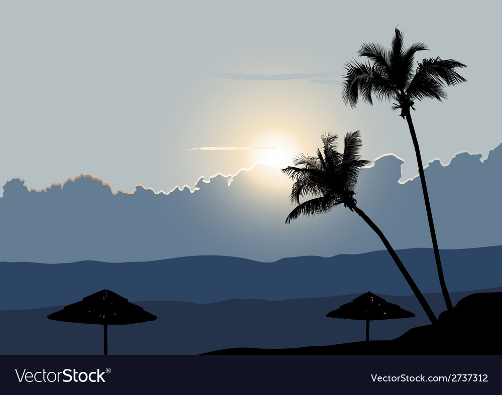 A tropical early morning sunrise with palm trees vector | Price: 1 Credit (USD $1)