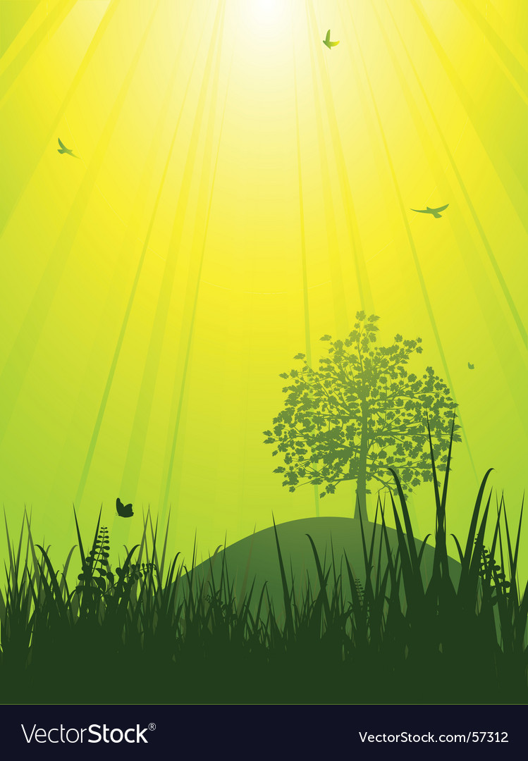 Tranquil summer landscape vector | Price: 1 Credit (USD $1)
