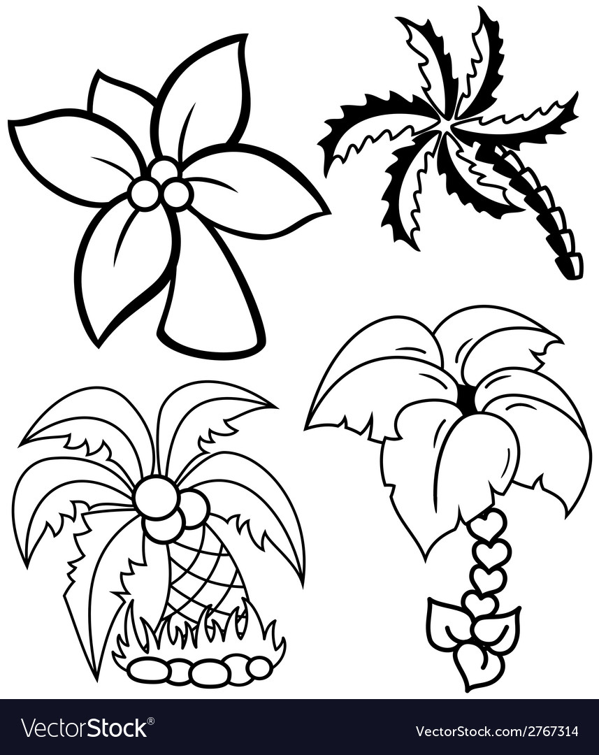 Palm trees set vector | Price: 1 Credit (USD $1)